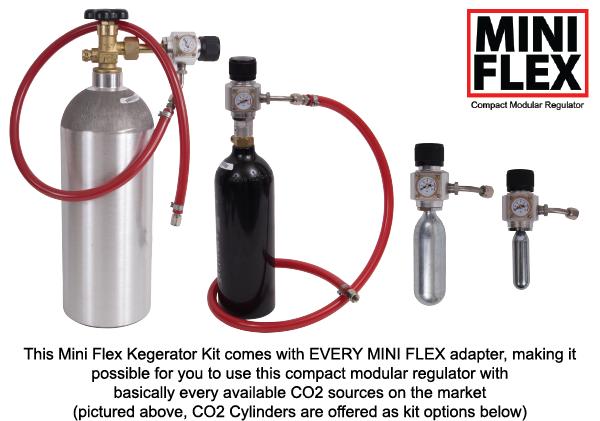 mini-flex-1-faucet-basic-explainer.png